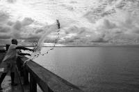 Port de Cayenne_1