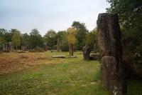 Les Menhirs de MONTENEUF (56)_1