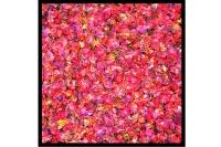 Fleurs sèches_4