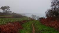 Dans la brume de Plouha_1