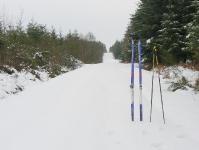 Ski de fond en Bretagne_1