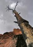 bryce canyon_1