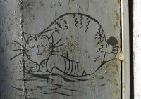 chat au mur 1_1