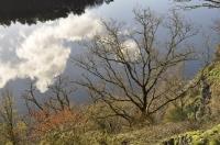 lac de Guerledan_1